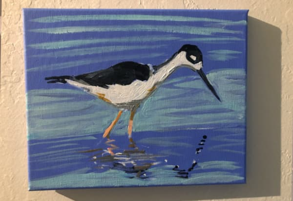 Black Necked Stilt: wip